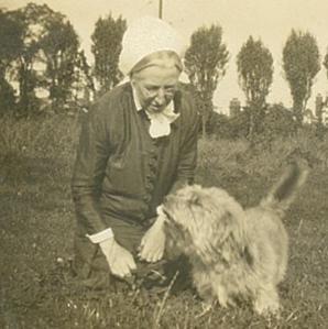 solomon square with dog